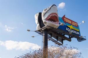 Aquarium, Myrtle Beach