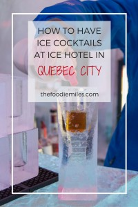 ice-cocktails-in-quebec-city