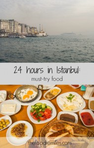 24 hours in istanbul meze