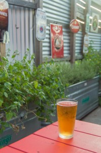 best austin foods and drinks