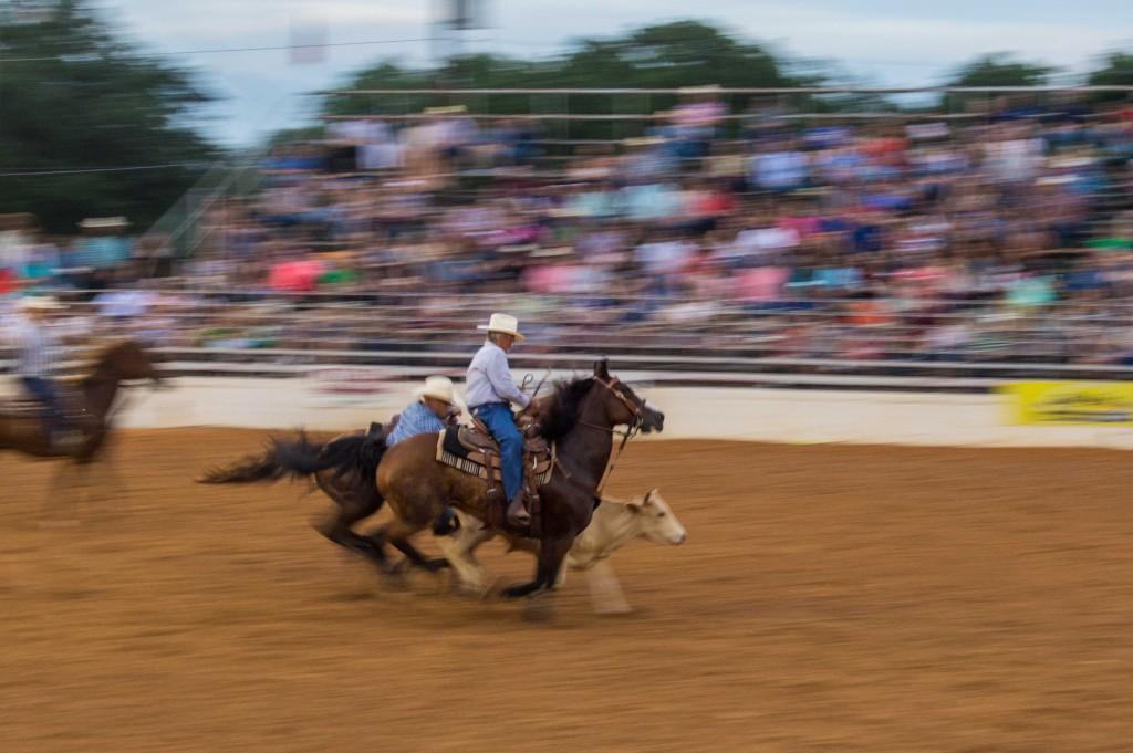 bull wrestling at rodeo
