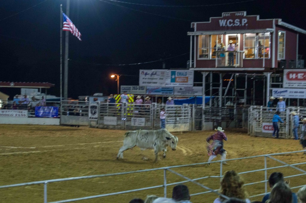 bullfighter at work
