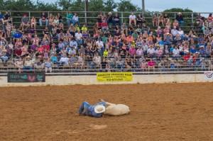 cowboy wrestling a bull