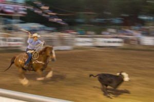 cowgirls breakaway roping
