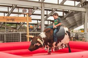 mecanical bull riding