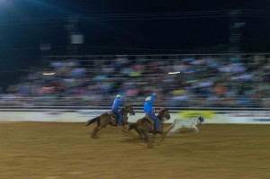 rodeo event steer roping