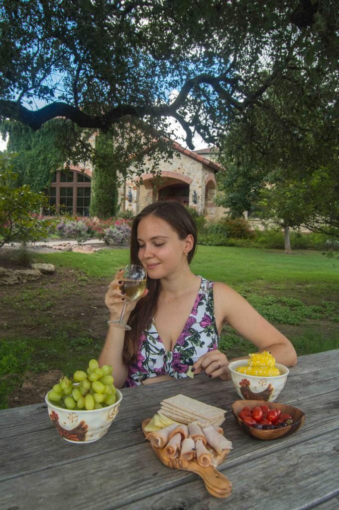 picnic near austin