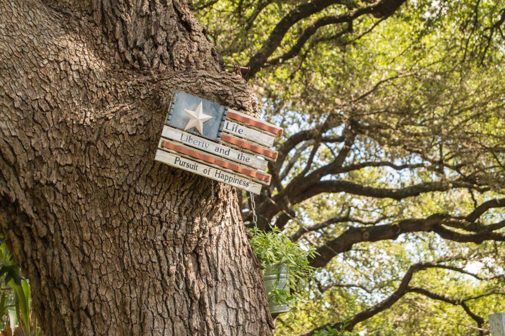 texas-nature