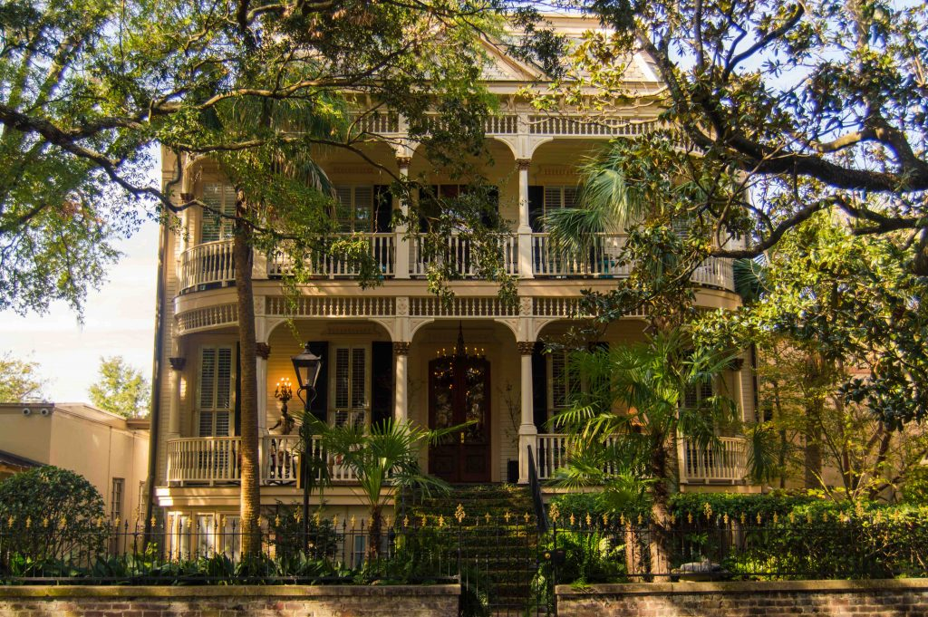 beautiful-pictures-of-savannah