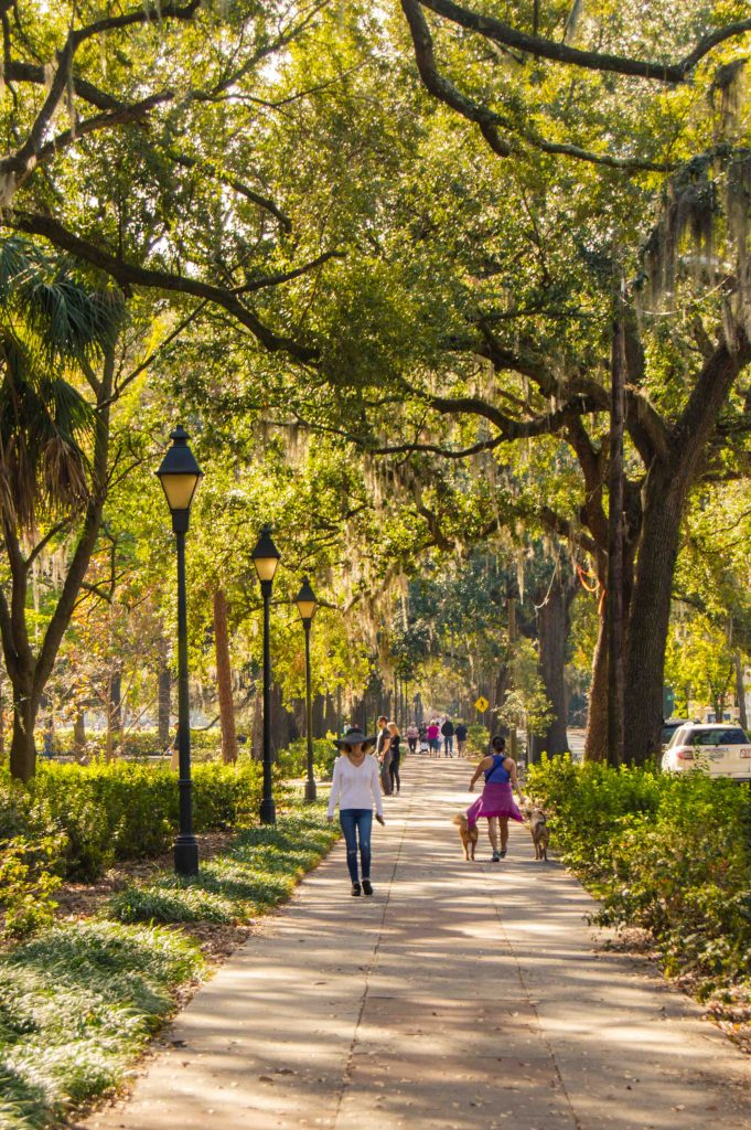 reasons-to-visit-savannah