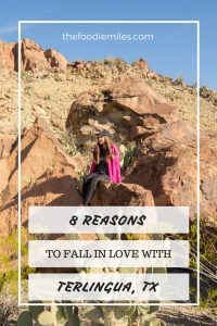 why you should visit terlingua tx