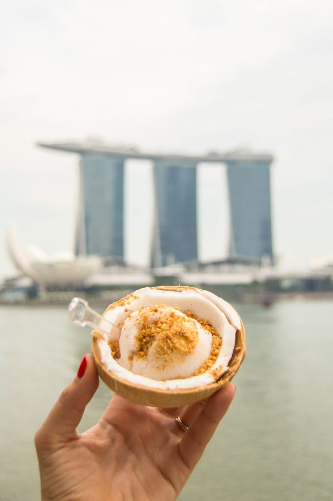 coconut ice cream marina bay