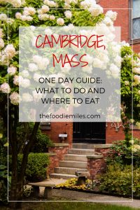 Cambridge MA what to do in one day