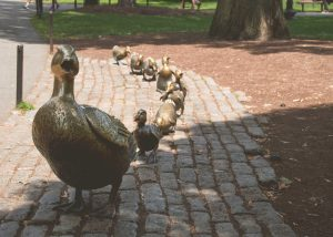 make-way-for-ducklings-boston