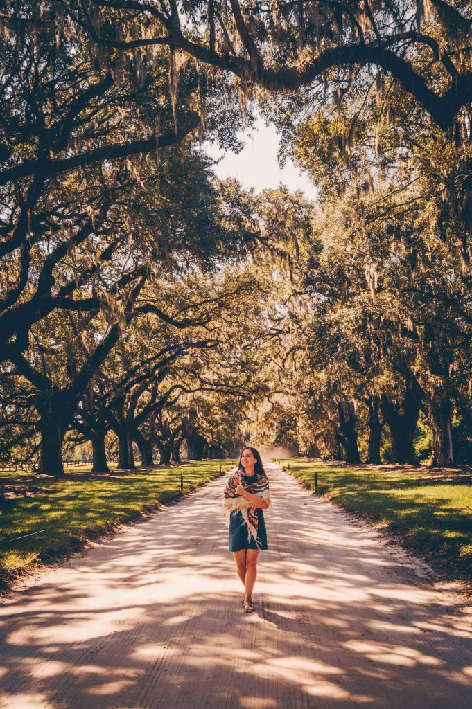 boone hill plantation charleston