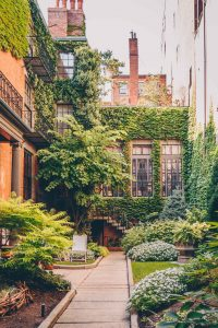 budget friendly things to do in Boston