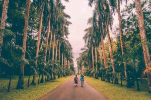 things to do in kandy
