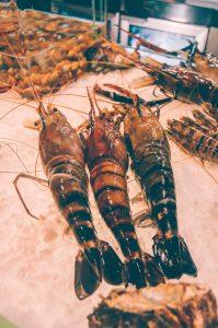 sri-lankan-prawns
