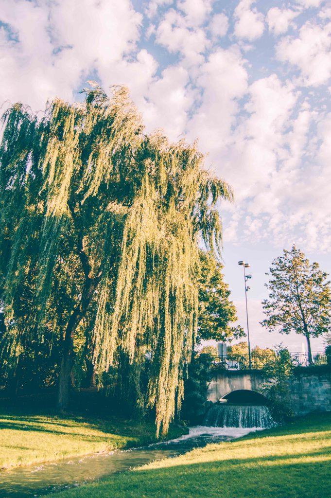 english-park-munich