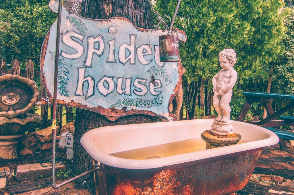 Spider house Cafe-austin-tx