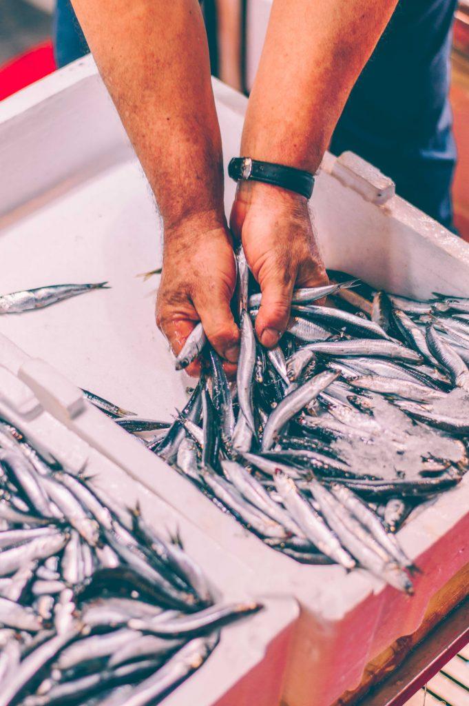 karakoy-fish-market