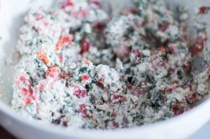 cottage-cheese-ramps-filling