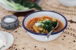 shchi-fresh-cabbage-soup
